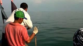 Download Video Mancing mania AK3 Fishing Club kota Langsa MP3 3GP MP4
