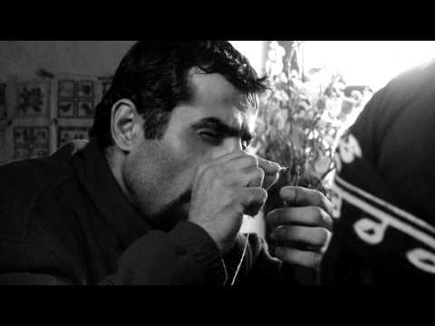 The Last Winter - Trailer 1