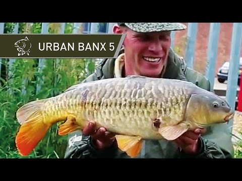 Urban Canal Carp Fishing - Urban Banx 5 with Alan Blair - Stratford Upon Avon - Nash Tackle