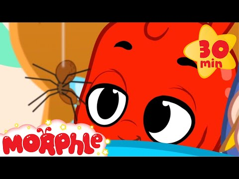 Mila and Morphle Get a Pet Spider - My Magic Pet Morphle | Cartoons For Kids | Morphle TV