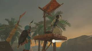 The Small Town Gamer: Legend of Zelda Breath of the Wild Part 98