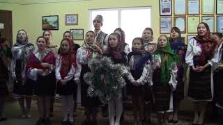 Tradiții de Sfântul Vasile și Sorcova la Consiliul raional Dubăsari
