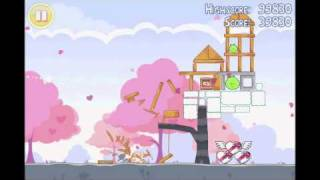 Angry Birds Seasons 3 star walkthrough for Hogs and Kisses level 1-5