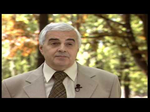 Гармония человека и природы Философия природы 2 (видео)