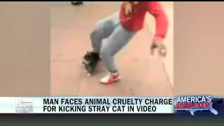 Man faces animal cruelty charge for kicking stray cat   Fox News Video
