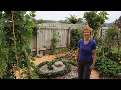 Edible paradise on only 30 square metres: Marie Mannings Super-productive home garden