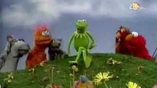 Sesamstraat - Kermit - Het leeft