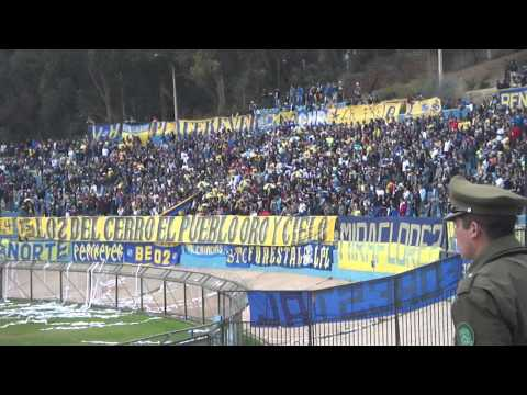 LOS DEL CERRO / EVERTON Jugadores hay que poner mas huevos - Los del Cerro - Everton de Viña del Mar