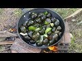 Wow! Amazing cute girl cooking snail with coconut / AHA Factory