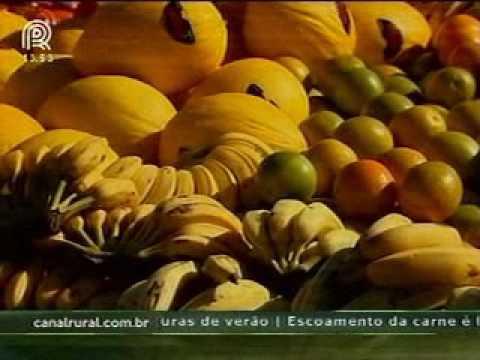 Brasil quebra recorde de maior mesa de frutas do mundo