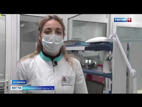 В Астраханской области Управлением Россельхознадзора проконтролирован ввоз более 350 тонн продовольственной фасоли