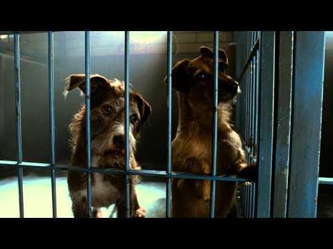 Soltando os Cachorros - Trailer
