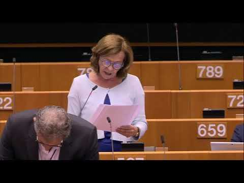 Margarida Marques debate sobre Quadro Financeiro Plurianual 2021 2027