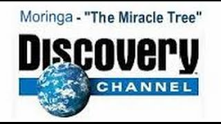 ZIJA & DISCOVERY CHANNEL