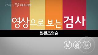 혈관조영술 미리보기