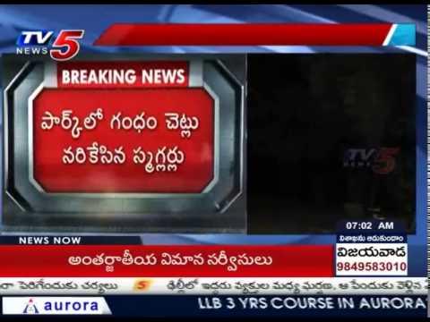 Smugglers Caught Red-Handed In KBR Park | Hyderabad : TV5 News