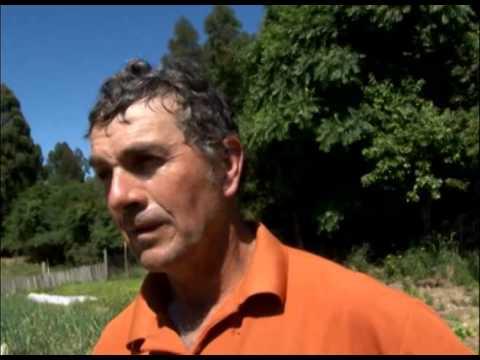 Sistematização de experiências PAA Gramado Xavier- Programa Rio Grande Rural