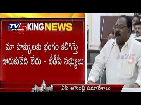 TDP Ministers warns YCP over Disturbing Their Rights | AP Assembly : TV5 News