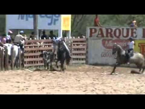 Vaquejada   Parq  Diógenes da Cunha Lima   Nova Cruz   RN  Categoria Mirim