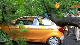 'Huge' Tree falls on car in sadar, no one injured