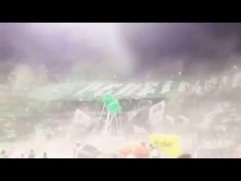 Salida telón gigante Los del sur Pereira/ Nacional Vs Millonarios - Los del Sur - Atlético Nacional - Colombia - América del Sur