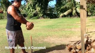 http://cook-islands-holiday-guide.blogspot.com/ How to husk a Coconut - with Shaun .. ..
