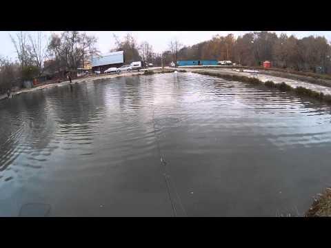 Тимирязевская академия платный пруд