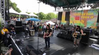 Download Lagu Tribal Seeds - CaliRoots 2013 Mp3