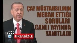 Cumhurbaşkanı Erdoğan yaş çay taban fiyatını ve çay bölgesine geliş izinleri ile ilgili kararı açıkladı