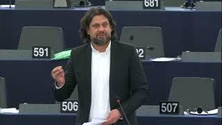 A tagállamokban a jogállamiság tekintetében fennálló, általánossá vált hiányosságok esetén az Unió költségvetésének védelméről szóló plenáris vita, Strasbourg, 2019. január 16.