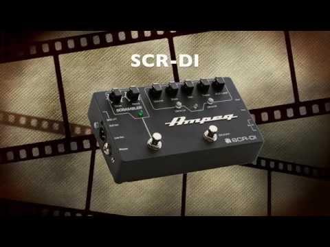AMPEG SCR-DI démo vidéo: Un véritable couteau suisse pour bassiste ( La Boite Noire )
