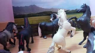 Le cheval c'est trop génial épisode 1 ( partie 1 )