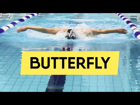 Butterfly Swimming: Most Useful Tips (2019) @ Swimmate