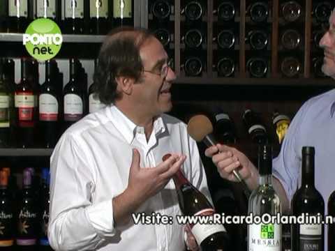 Programa PontoNet com Ricardo Orlandini - 19/02/2010 - Bloco 2
