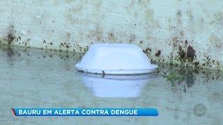 Bauru entra em estado de alerta e pode ter nova epidemia de dengue