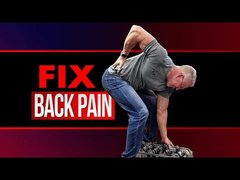 How To FIX Lower Back Pain (Instantly!)