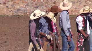 Jaripeos y rodeos Colonia Pur�sima del Maguey