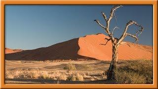 Clama Una Voz en el Desierto!!