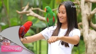 Weekend List Bali Bird Park