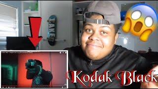 "Kodak Black ""Pimpin Aint Eazy"" | music video *Reaction*"