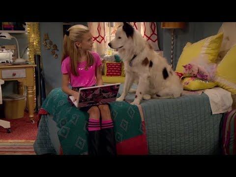 Смотри Сериалы Disney Все Серии Подряд - Собака точка ком - Сезон 1 Серии 13,14,15 (видео)