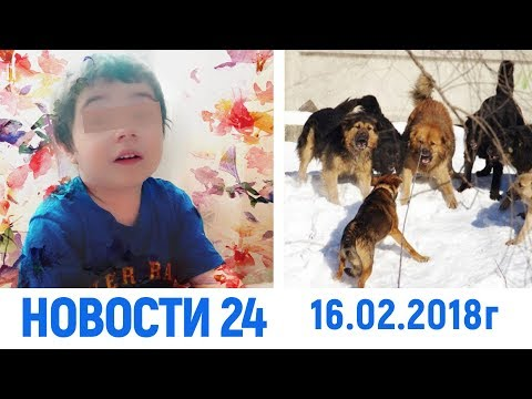Новости Дагестан за 16.02.2018 год - DomaVideo.Ru