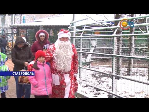 Дед Мороз в зоопарке 2016