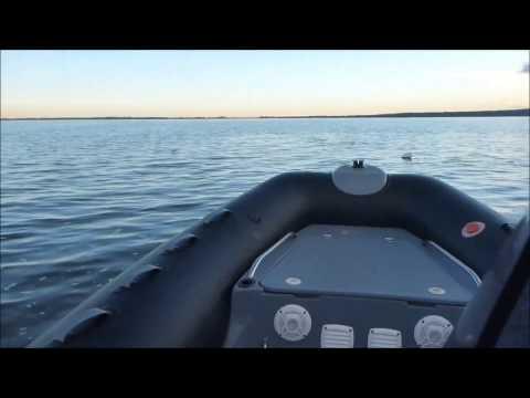 эхолот для ловли судака