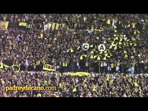 """Peñarol """"La Copa Libertadores es mi obsesión"""" - Libertadores 2014 - Barra Amsterdam - Peñarol - Uruguay - América del Sur"""