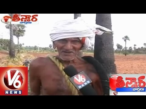 97 year old man climbs trees in Nalgonda district - Special Report - Teenmaar News