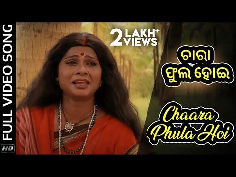 Jai Jagannath Odia Movie|| Chaara Phula Hoi | Official Video Song