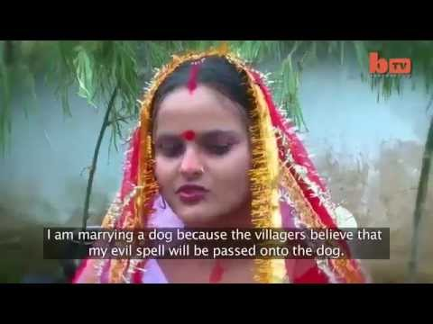 Video 18Year old Girl married dog in jhargand india download in MP3, 3GP, MP4, WEBM, AVI, FLV January 2017