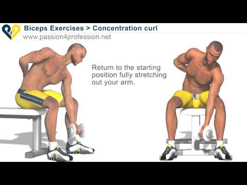 Bodybuilding Exercises – Free Weights