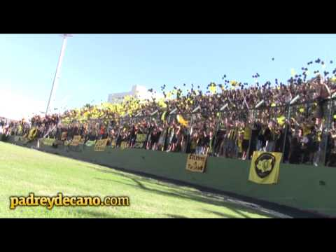 """""""Mi viejo me enseñó cuando nací..."""" Peñarol en Maldonado - Barra Amsterdam - Peñarol"""